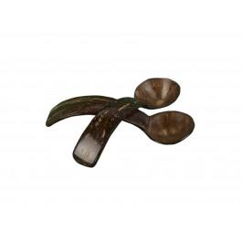 Lepeltje kokos